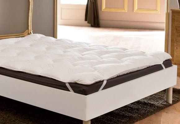 Traitement Efficace Contre Les Punaises De Lit Dans Vos Hotels